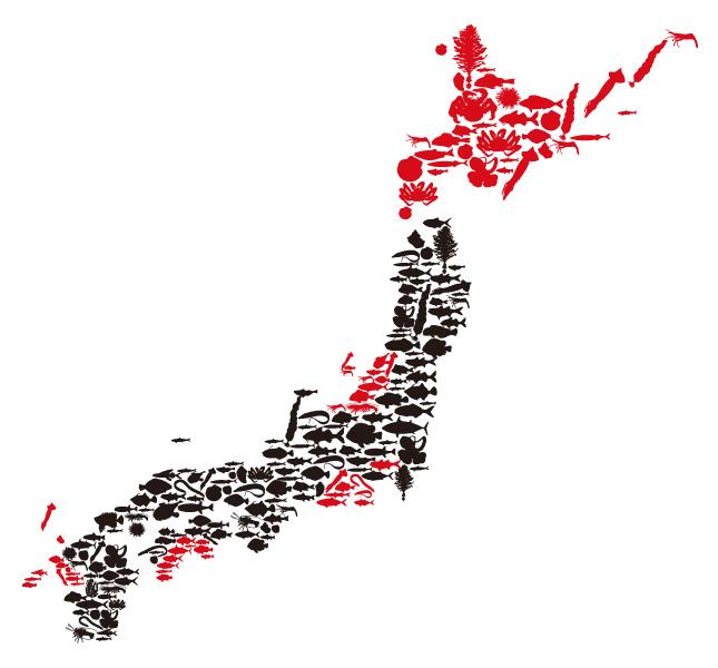 築地にっぽん漁港市場_魚マップ